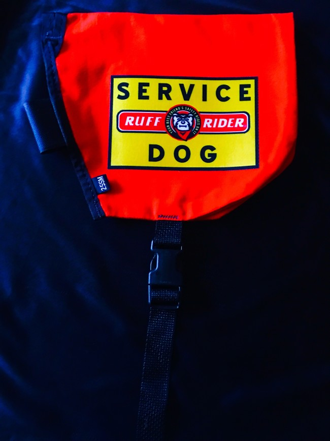 RuffRider Roadie Service Dog cape picture