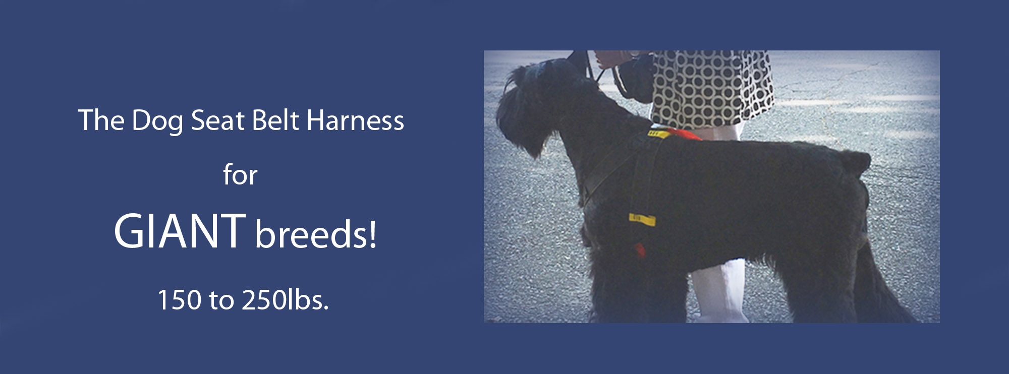 Ruff Rider Dog Safety Harness seatbelt for Giant Breeds 150 to 250lbs.