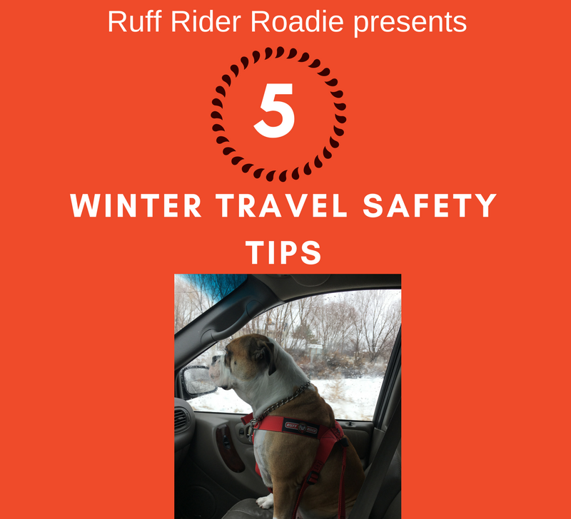Ruff Rider - Winter Travel Safety Tips